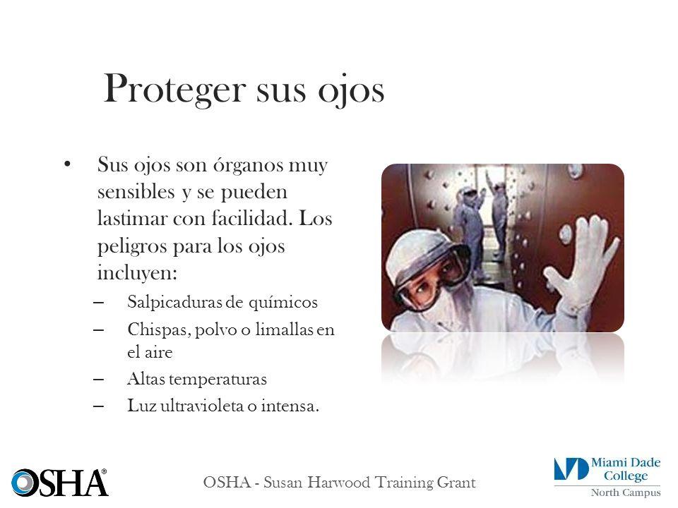 OSHA - Susan Harwood Training Grant Sus ojos son órganos muy sensibles y se pueden lastimar con facilidad. Los peligros para los ojos incluyen: – Salp