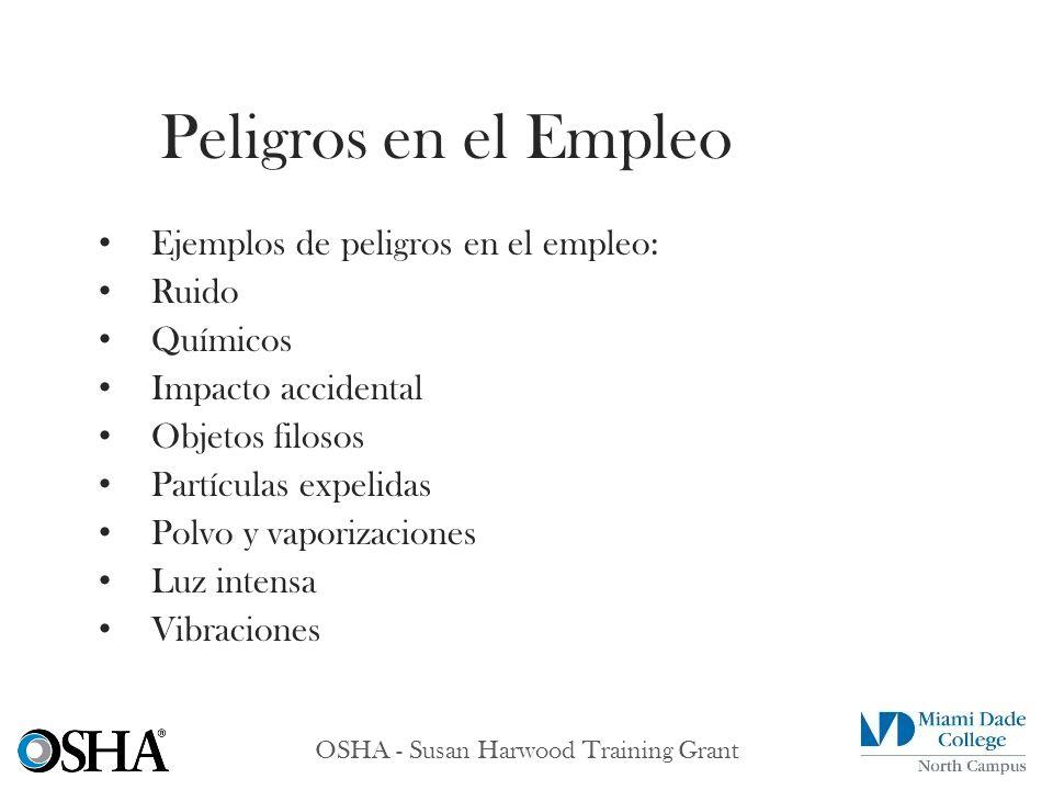 OSHA - Susan Harwood Training Grant Ejemplos de peligros en el empleo: Ruido Químicos Impacto accidental Objetos filosos Partículas expelidas Polvo y