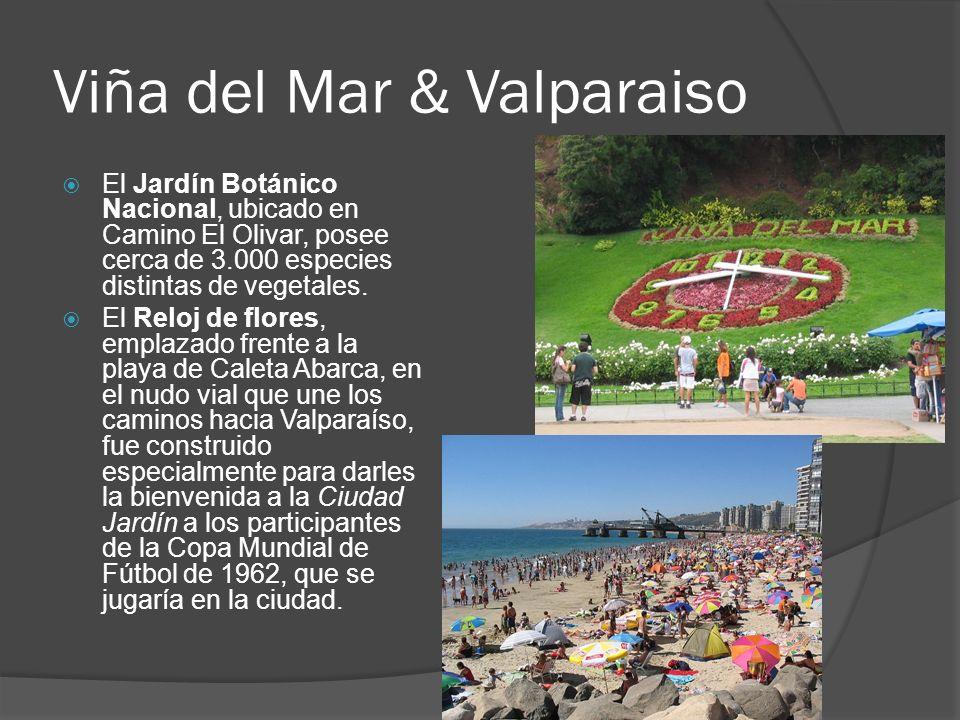 Viña del Mar & Valparaiso El Jardín Botánico Nacional, ubicado en Camino El Olivar, posee cerca de 3.000 especies distintas de vegetales. El Reloj de