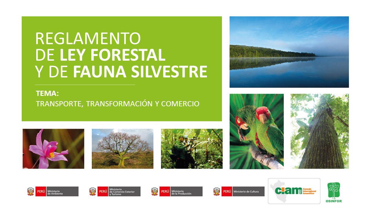 REGLAMENTO DE LEY FORESTAL Y DE FAUNA SILVESTRE TEMA: TRANSPORTE, TRANSFORMACIÓN Y COMERCIO