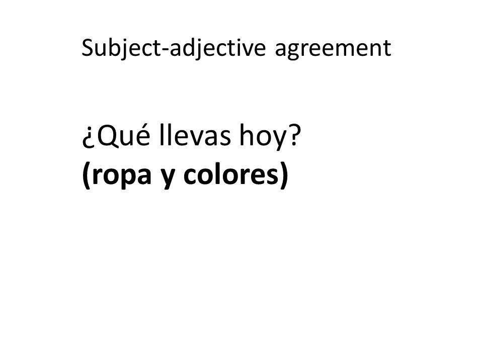 Subject-adjective agreement ¿Qué llevas hoy (ropa y colores)
