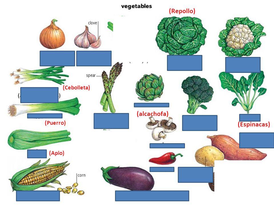 (Tomillo)(Romero)(Eneldo)(Estragon) (Cebolla de Hoja) (Cilantro) (Laurel)(Salvia) (Albahaca) (Menta/Hierbabuena)(Perejil) (Oregano)
