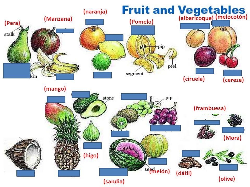 (Pomelo) (albaricoque) (Mora) (Grosella) (Pera) (Peər)) (Manzana) (naranja) (melocotón) (mango) (higo) (sandia) (dátil) (frambuesa) (olive) (ciruela)