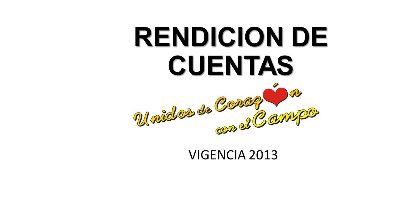 RENDICION DE CUENTAS VIGENCIA 2013