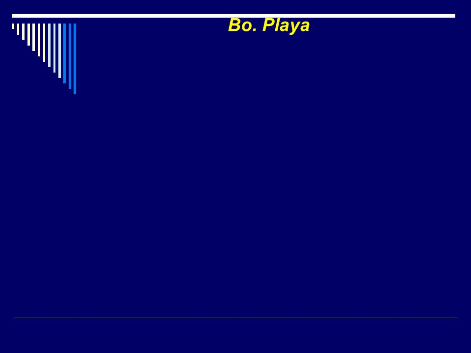 Bo. Playa