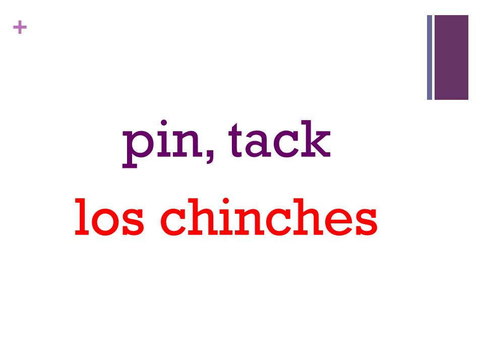 + pin, tack los chinches