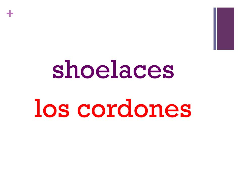+ shoelaces los cordones