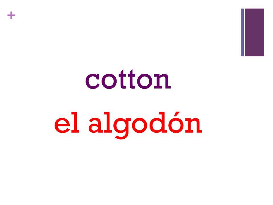 + cotton el algodón