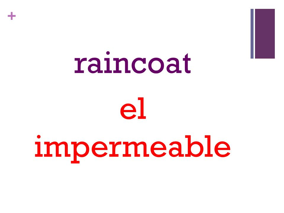 + raincoat el impermeable