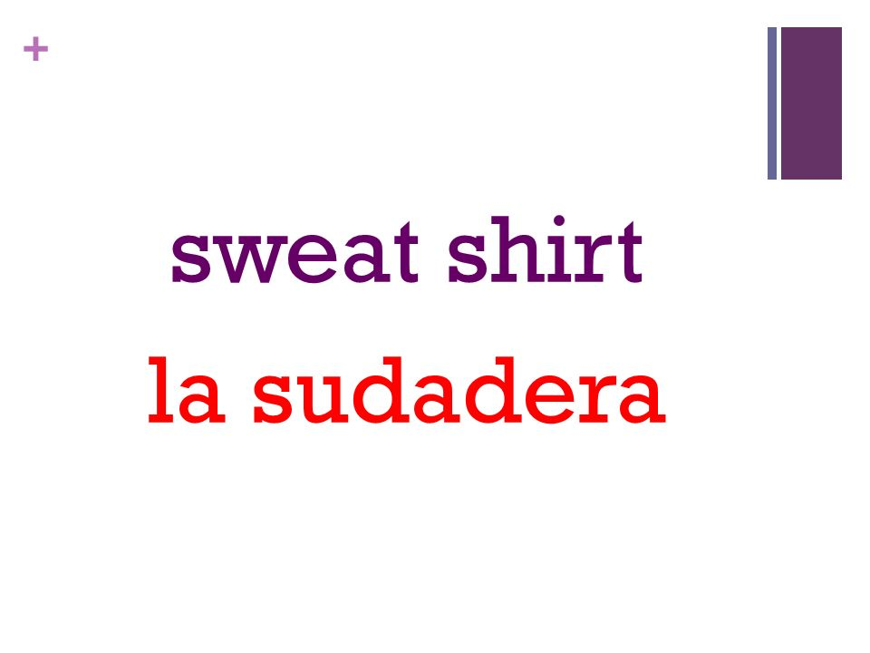 + sweat shirt la sudadera