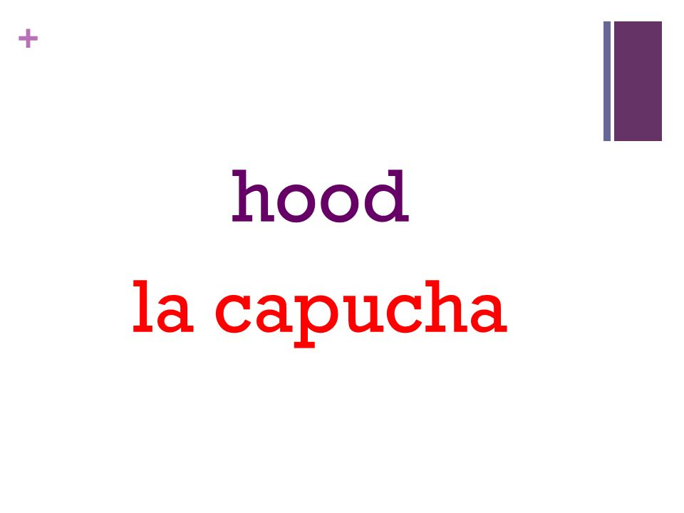 + hood la capucha