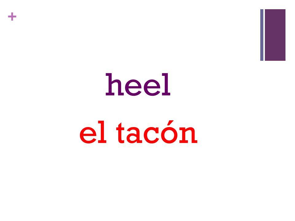 + heel el tacón