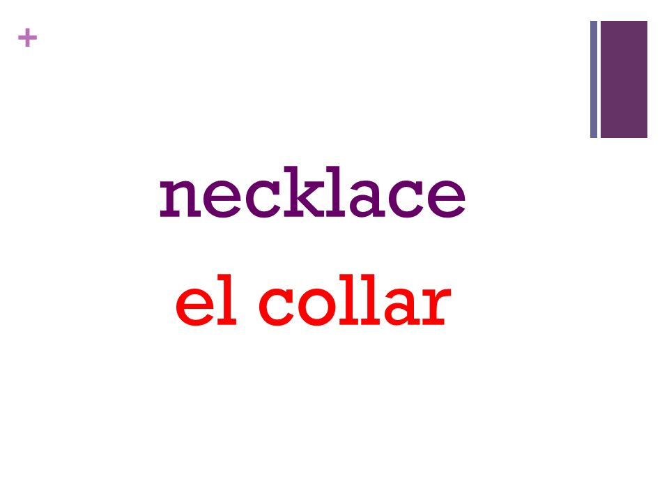 + necklace el collar
