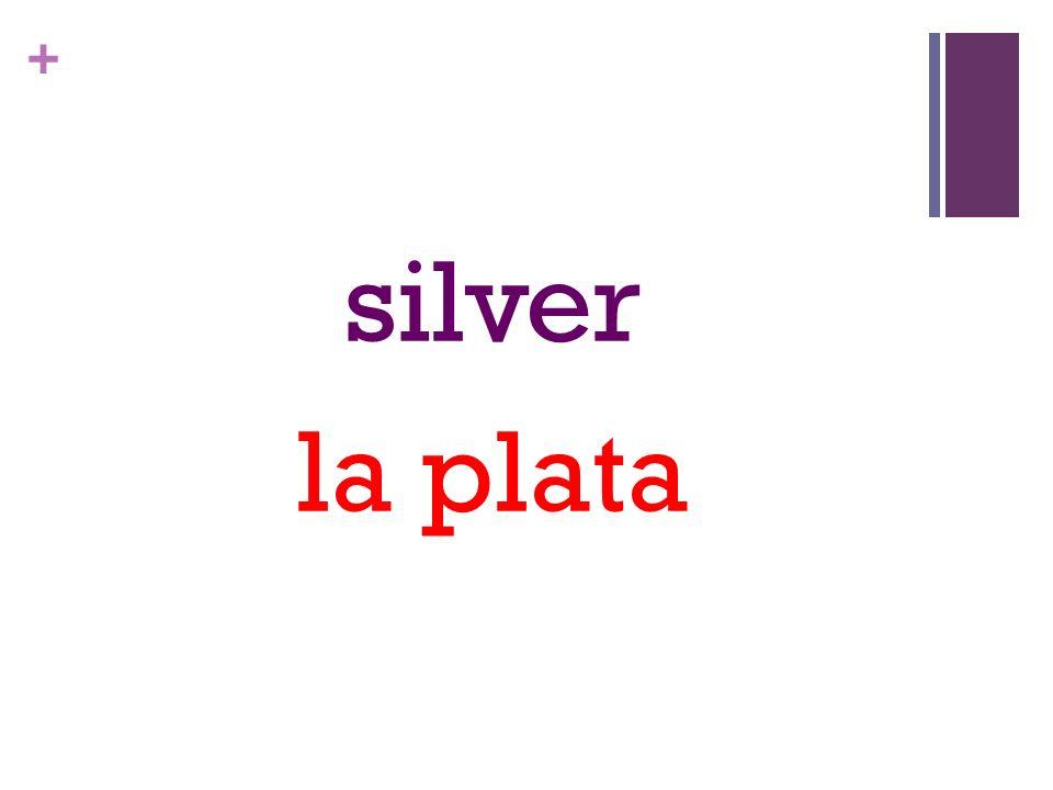 + silver la plata