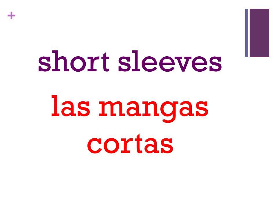 + short sleeves las mangas cortas