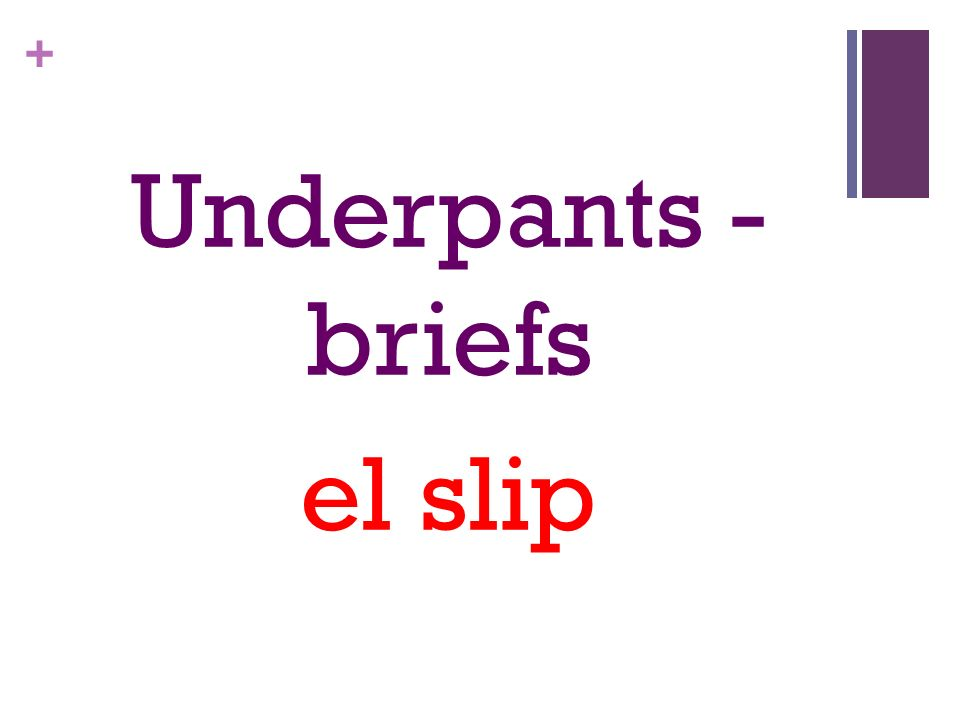 + Underpants - briefs el slip