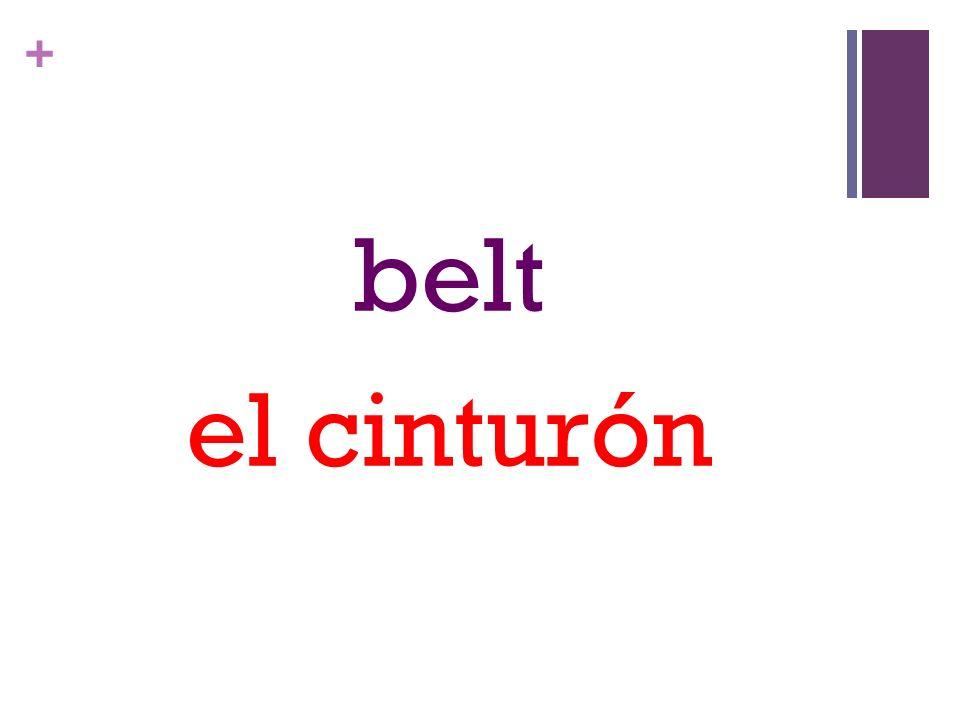 + belt el cinturón