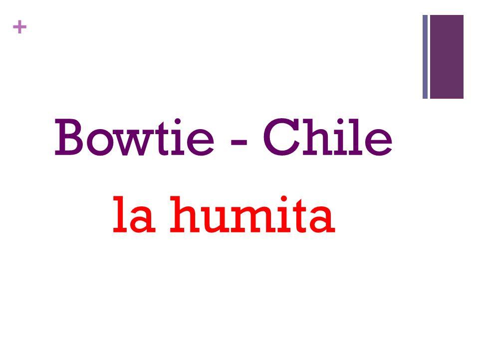 + Bowtie - Chile la humita