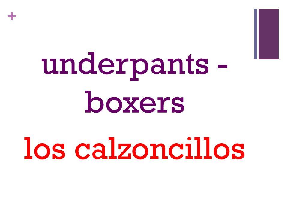 + underpants - boxers los calzoncillos