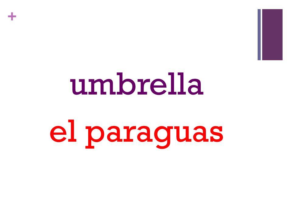 + umbrella el paraguas