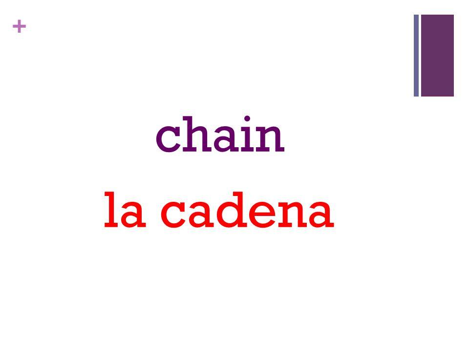 + chain la cadena