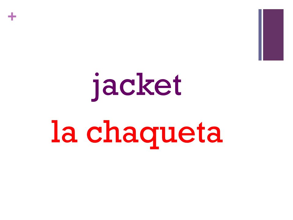 + jacket la chaqueta