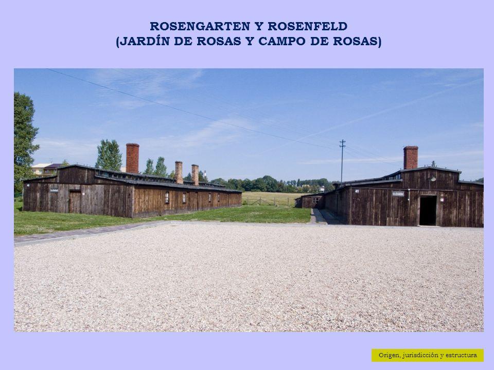 Origen, jurisdicción y estructura ROSENGARTEN Y ROSENFELD (JARDÍN DE ROSAS Y CAMPO DE ROSAS)