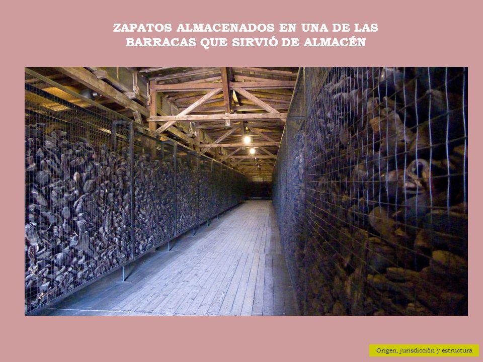 ZAPATOS ALMACENADOS EN UNA DE LAS BARRACAS QUE SIRVIÓ DE ALMACÉN Origen, jurisdicción y estructura