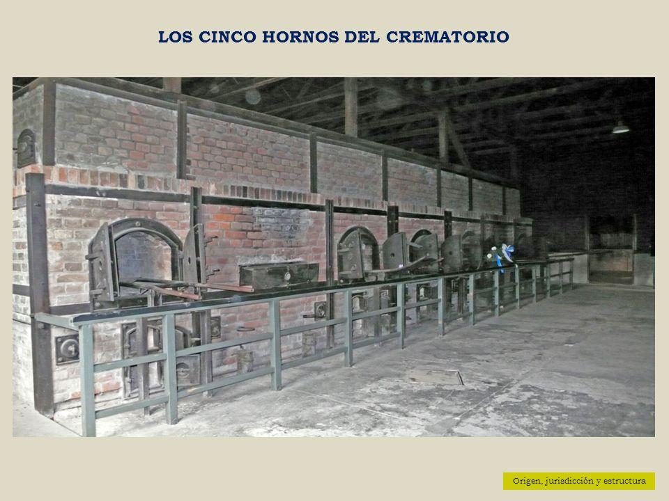 Origen, jurisdicción y estructura LOS CINCO HORNOS DEL CREMATORIO