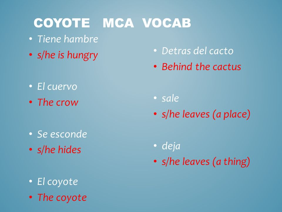PARA EMPEZAR: Using El Coyote MCA vocab write 4 sentences using all the vocab VERBO DEL DIA: salir Conversaciones: Ten 3 conversaciones con un amigo MCA Listening & Reading & answer questions MCB1: PQA for pesos; make flashcards & sentences; and storytelling SONG: La vida es un carnaval POR Celia Cruz BOLETO DE SALIDA: QUE SIGNIFICA El coyote ve el pajaro Watch Roadrunner cartoon y escribe en espanol lo que ves.