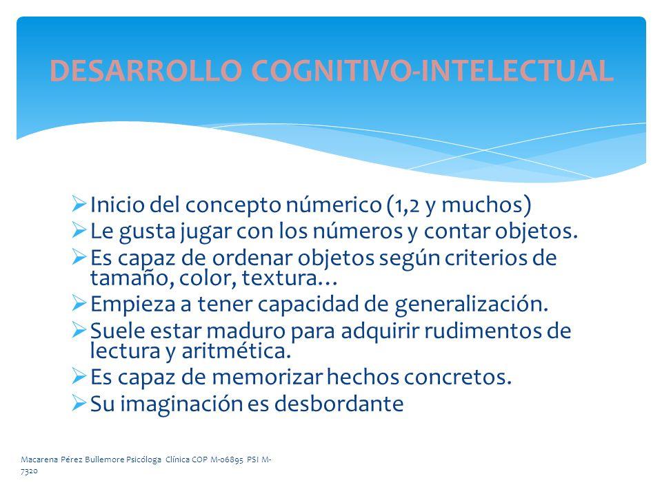 DESARROLLO COGNITIVO-INTELECTUAL Inicio del concepto númerico (1,2 y muchos) Le gusta jugar con los números y contar objetos. Es capaz de ordenar obje