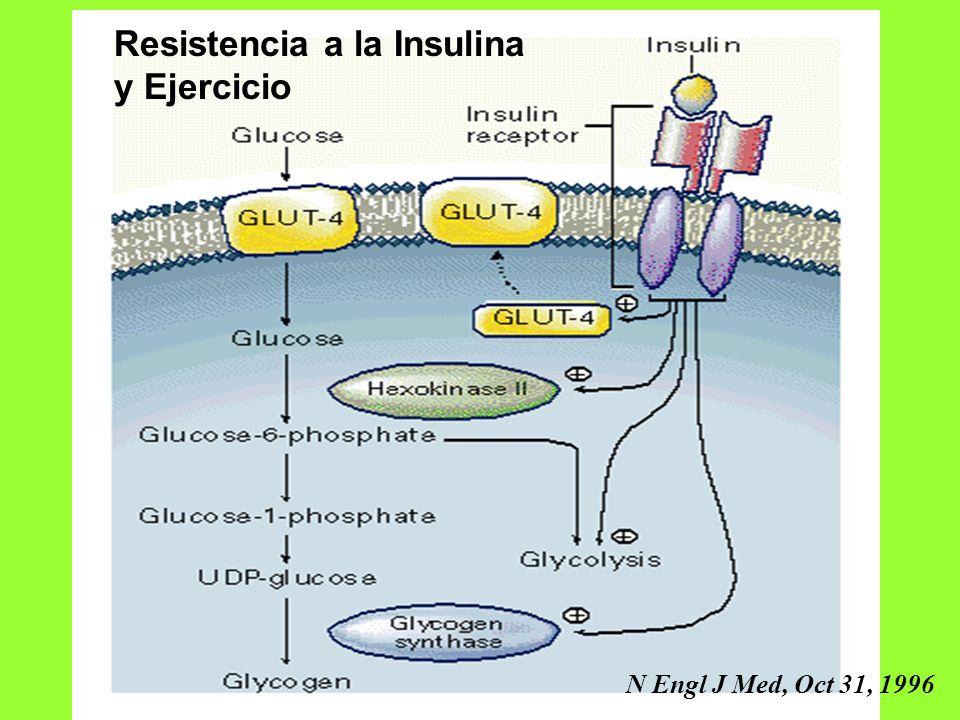 Resistencia a la Insulina y Ejercicio N Engl J Med, Oct 31, 1996