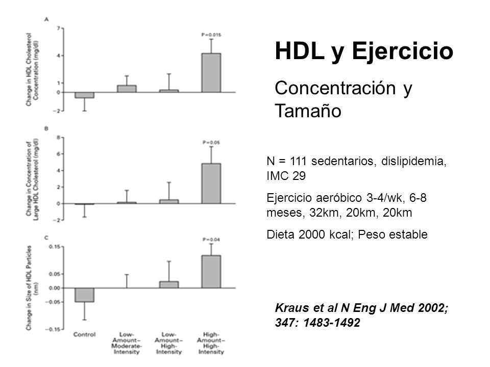 HDL y Ejercicio Concentración y Tamaño Kraus et al N Eng J Med 2002; 347: 1483-1492 N = 111 sedentarios, dislipidemia, IMC 29 Ejercicio aeróbico 3-4/w