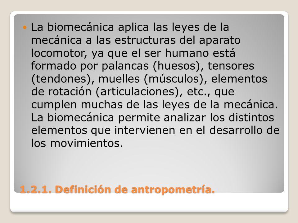 1.2.1. Definición de antropometría. 1.2.1. Definición de antropometría. La biomecánica aplica las leyes de la mecánica a las estructuras del aparato l