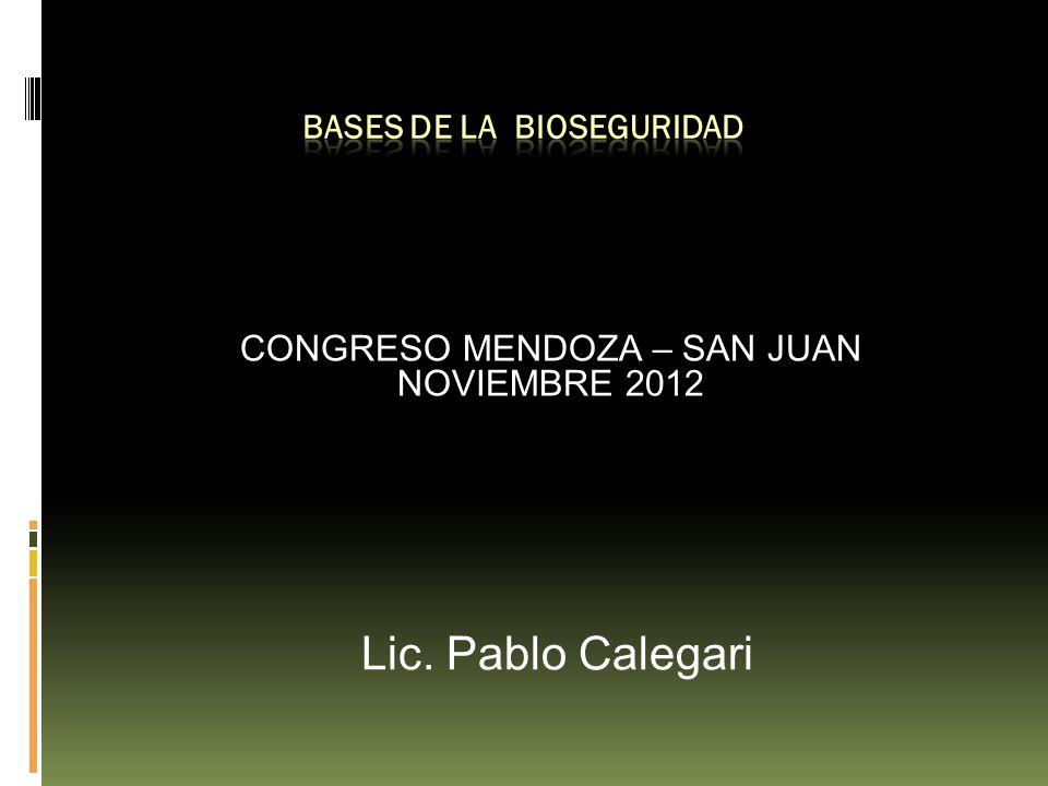 CONGRESO MENDOZA – SAN JUAN NOVIEMBRE 2012 Lic. Pablo Calegari