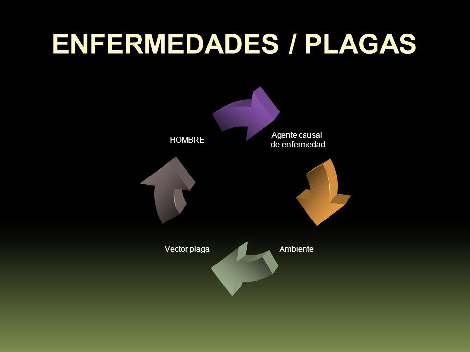 Agente causal de enfermedad Ambiente Vector plaga HOMBRE ENFERMEDADES / PLAGAS