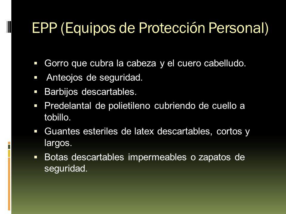 EPP (Equipos de Protección Personal) Gorro que cubra la cabeza y el cuero cabelludo. Anteojos de seguridad. Barbijos descartables. Predelantal de poli