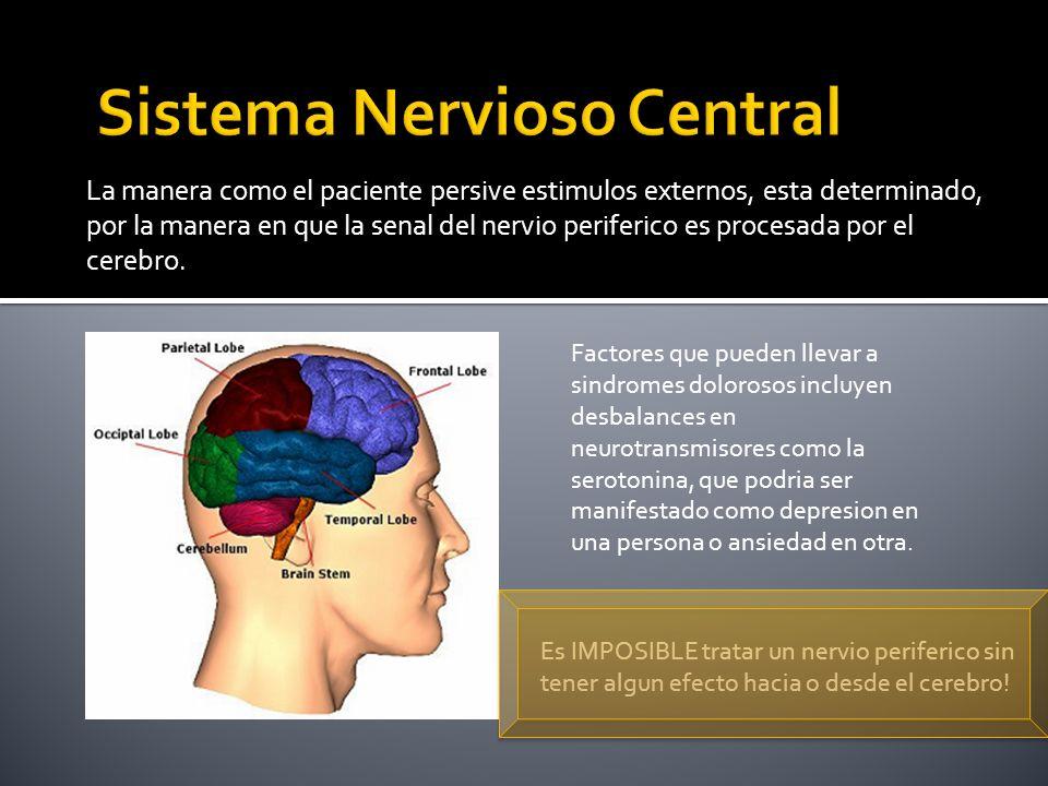 La manera como el paciente persive estimulos externos, esta determinado, por la manera en que la senal del nervio periferico es procesada por el cereb