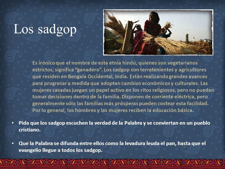 Los sadgop Es irónico que el nombre de esta etnia hindú, quienes son vegetarianos estrictos, significa ganadero. Los sadgop son terratenientes y agric