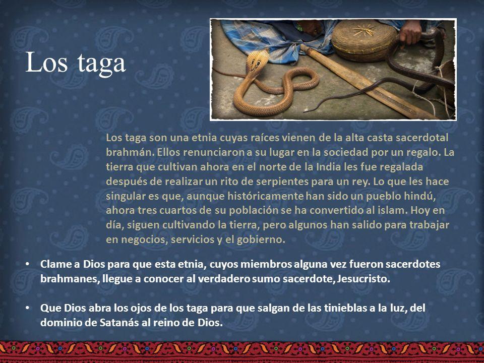 Los taga Los taga son una etnia cuyas raíces vienen de la alta casta sacerdotal brahmán. Ellos renunciaron a su lugar en la sociedad por un regalo. La