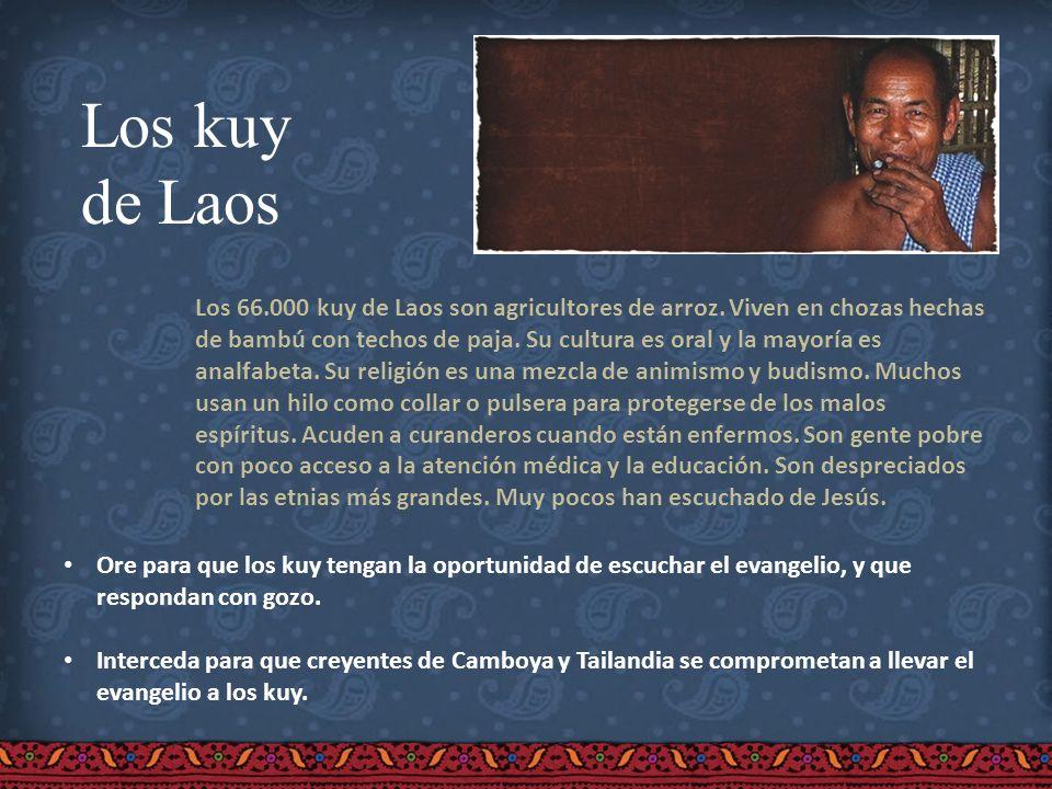 Los kuy de Laos Los 66.000 kuy de Laos son agricultores de arroz. Viven en chozas hechas de bambú con techos de paja. Su cultura es oral y la mayoría