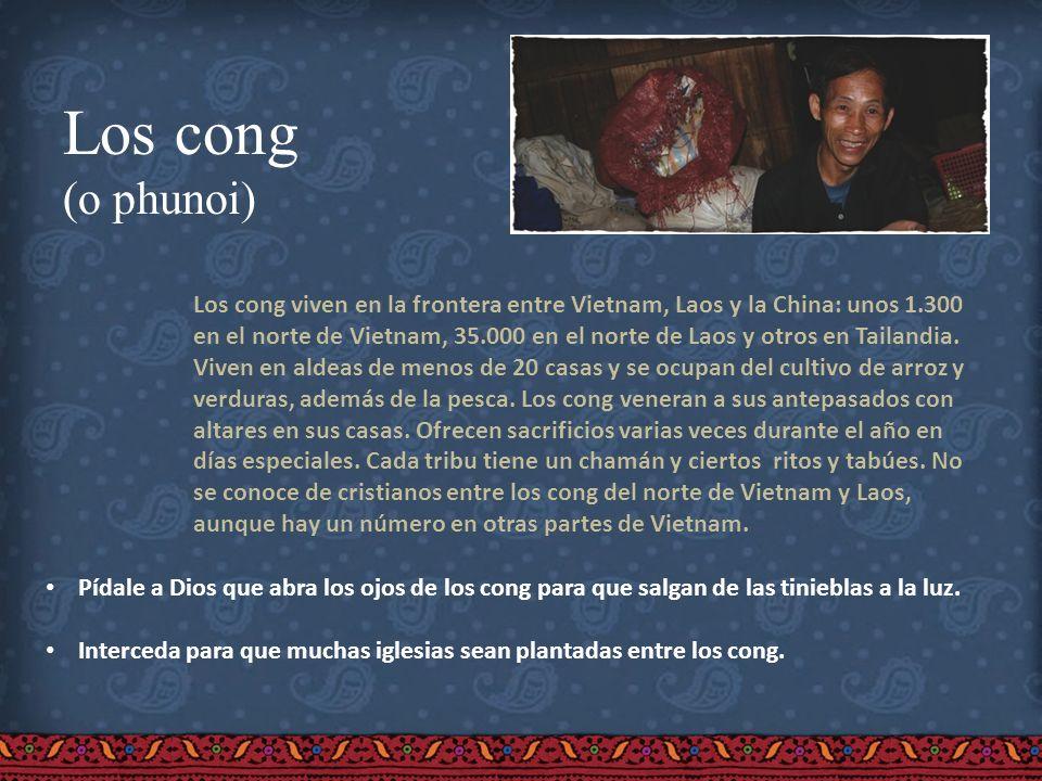 Los cong (o phunoi) Los cong viven en la frontera entre Vietnam, Laos y la China: unos 1.300 en el norte de Vietnam, 35.000 en el norte de Laos y otro