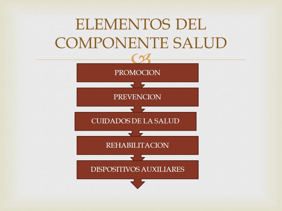 ELEMENTOS DEL COMPONENTE SALUD PROMOCION PREVENCION CUIDADOS DE LA SALUD REHABILITACION DISPOSITIVOS AUXILIARES