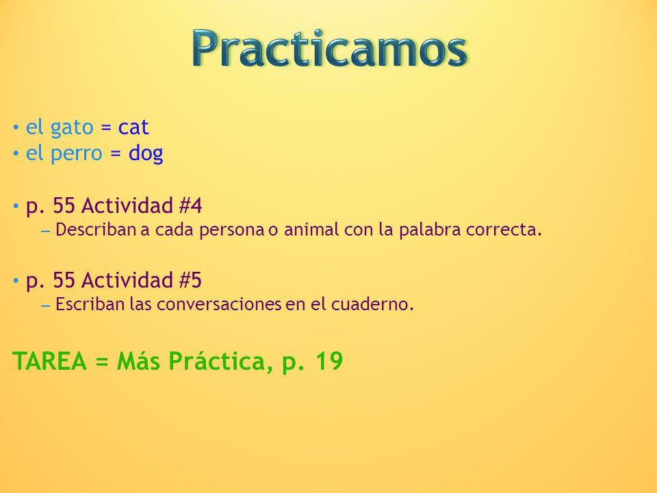 el gato = cat el perro = dog p. 55 Actividad #4 – Describan a cada persona o animal con la palabra correcta. p. 55 Actividad #5 – Escriban las convers
