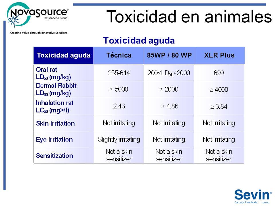Toxicidad aguda XLR PlusTécnica85WP / 80 WP Toxicidad en animales