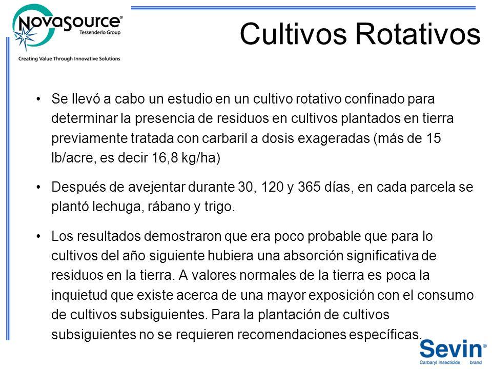 Cultivos Rotativos Se llevó a cabo un estudio en un cultivo rotativo confinado para determinar la presencia de residuos en cultivos plantados en tierr