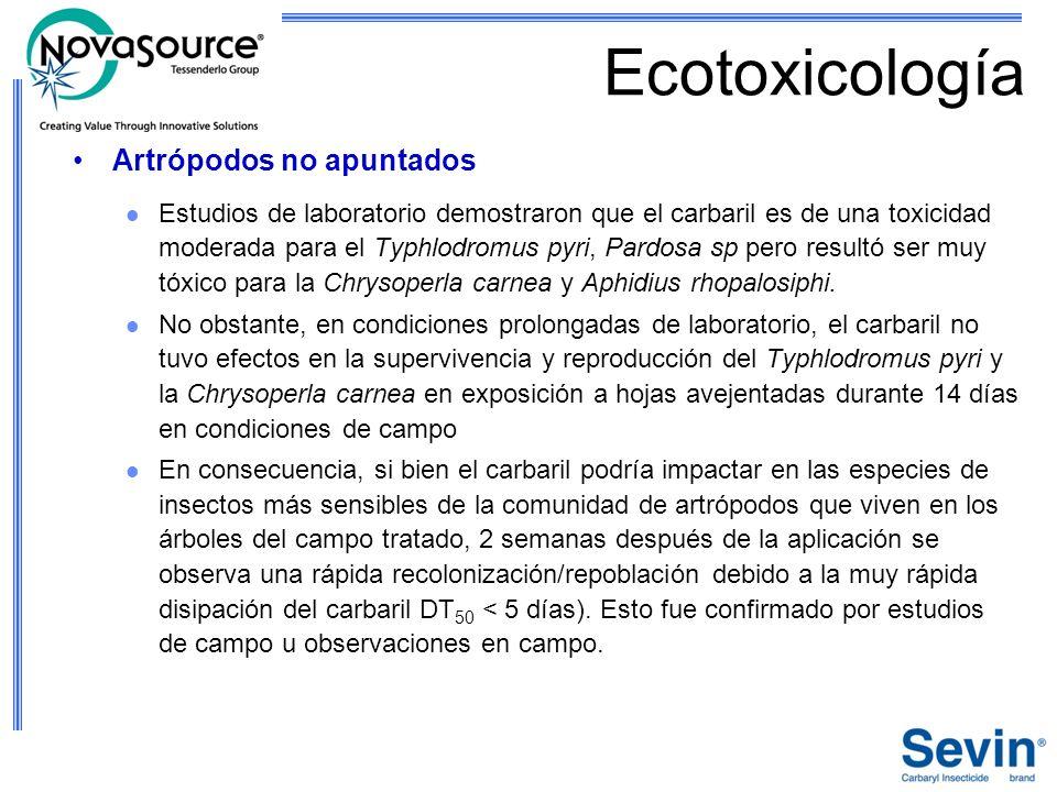 Ecotoxicología Artrópodos no apuntados Estudios de laboratorio demostraron que el carbaril es de una toxicidad moderada para el Typhlodromus pyri, Par
