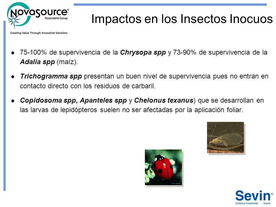 75-100% de supervivencia de la Chrysopa spp y 73-90% de supervivencia de la Adalia spp (maíz). Trichogramma spp presentan un buen nivel de supervivenc