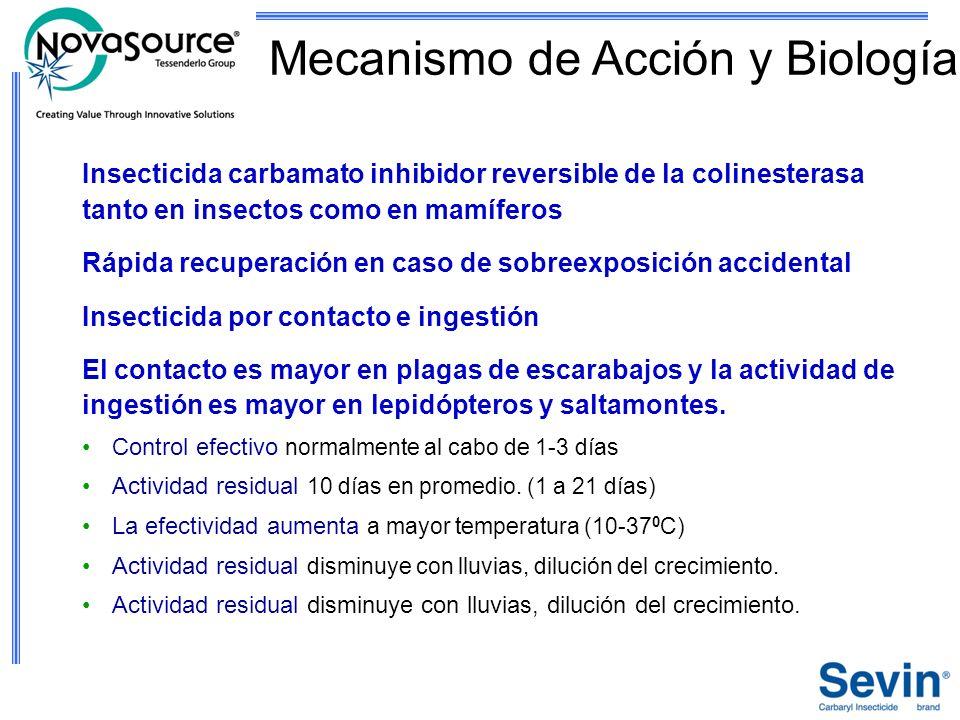 Mecanismo de Acción y Biología Insecticida carbamato inhibidor reversible de la colinesterasa tanto en insectos como en mamíferos Rápida recuperación
