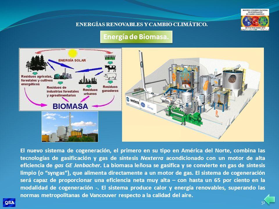 ENERGÍAS RENOVABLES Y CAMBIO CLIMÁTICO. Energía de Biomasa. El nuevo sistema de cogeneración, el primero en su tipo en América del Norte, combina las